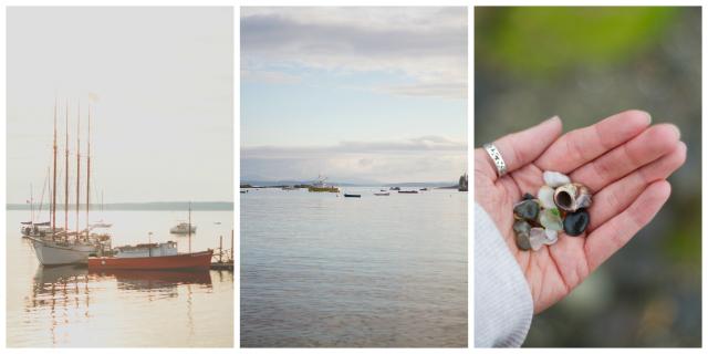 Maine Collage 2